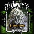 The Dark Side (KushBrothers)
