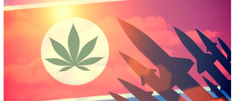 Marijuana Legale In Corea Del Nord: Fatti O Finzione