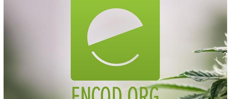 ENCOD (Coalizione Europea Per Politiche Giuste Ed Efficaci Sulle Droghe)