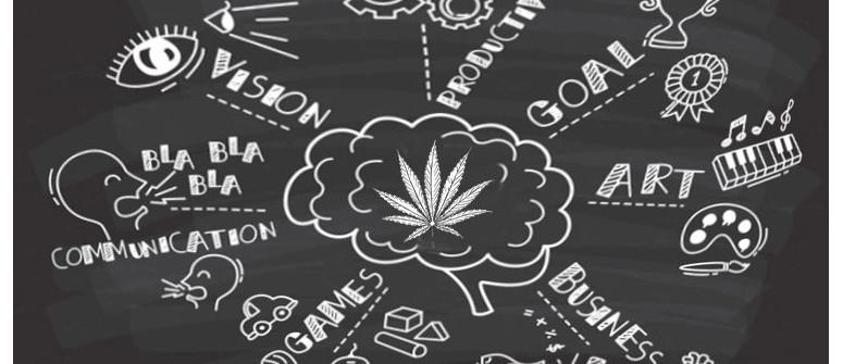 In Che Modo la Cannabis Può di Fatto Stimolare la Produttività