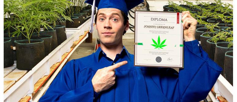 Istruzione Superiore: la Marijuana Insegnata nei College e nelle Università