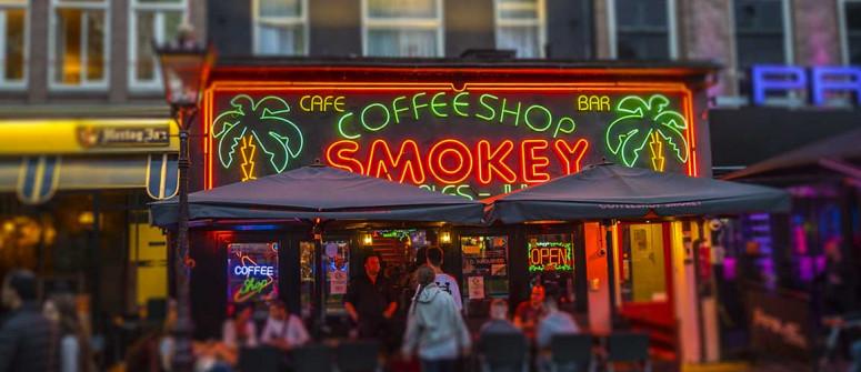 I coffeeshop di Amsterdam: 15 dritte per chi ci va per la prima volta