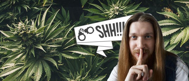 9 Consigli per coltivare marijuana senza attirare attenzioni