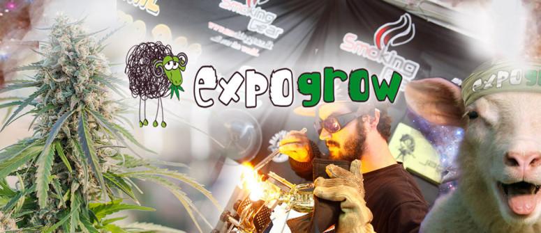 Expogrow - Un Evento Fumante per Tutti gli Appassionati di Cannabis
