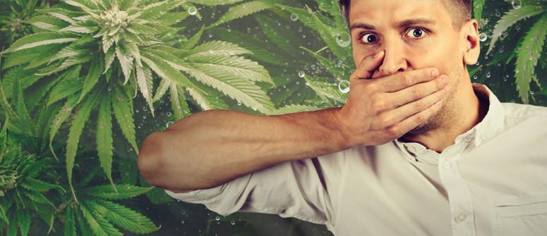 La cannabis può curare il singhiozzo?