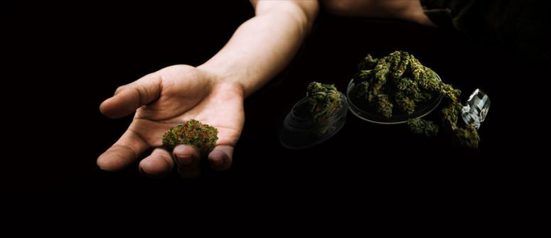 Si può morire per overdose di marijuana?