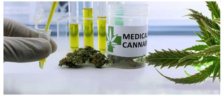 10 Modi in cui la cannabis può essere d'aiuto contro il cancro