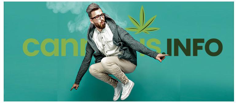 10 Dritte per Restare Produttivi Quando Si Consuma Cannabis