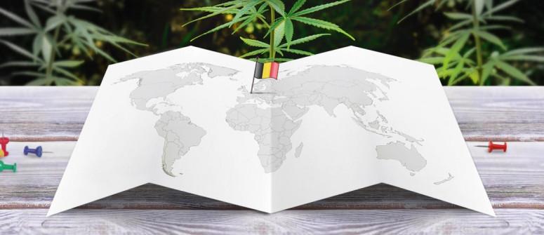 Statuto Giuridico della Marijuana in Belgio
