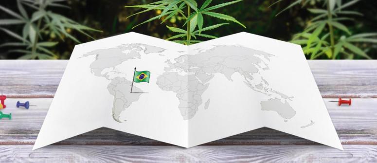 Stato legale della cannabis in Brasile