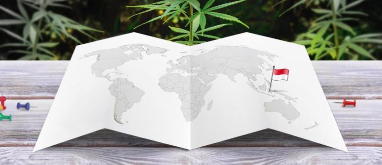 Stato legale della cannabis in Indonesia
