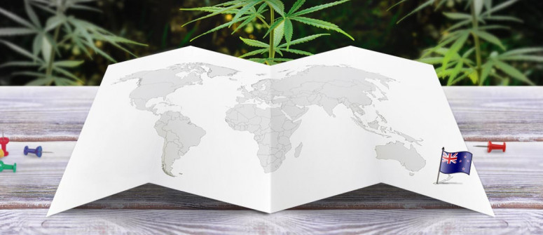 Stato legale della cannabis in Nuova Zelanda