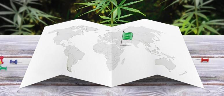 Stato legale della cannabis in Arabia Saudita