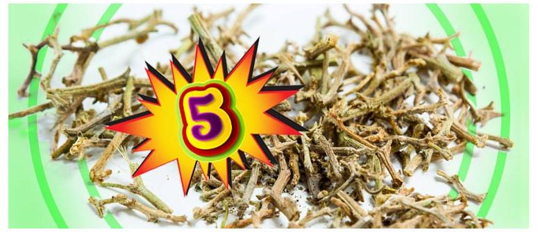 5 Buone ragioni per non buttare via i rametti della tua erba