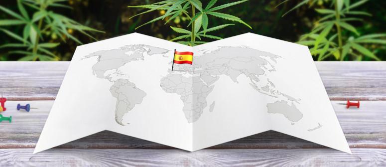 Statuto Legale della Marijuana in Spagna