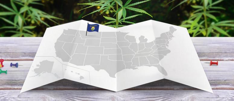 Statuto Giuridico della Marijuana nello Stato del Montana