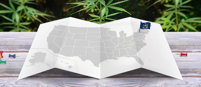 Statuto Giuridico della Marijuana nello Stato di New York