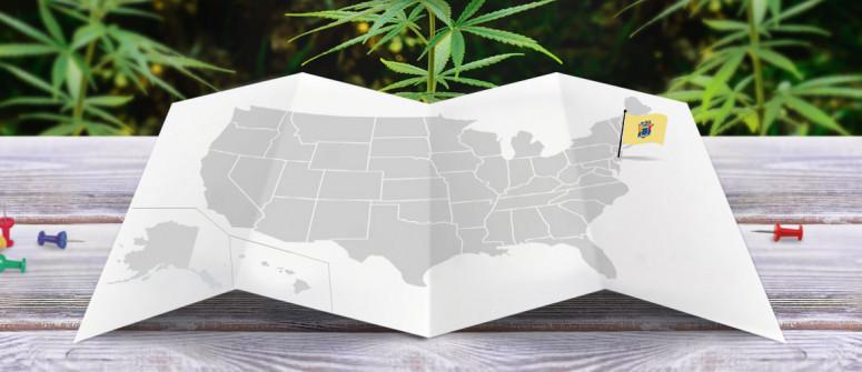 Statuto Giuridico della Marijuana nello Stato del New Jersey