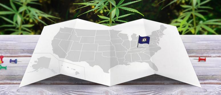Statuto Giuridico della Marijuana nello Stato del Kentucky