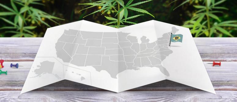 Statuto Giuridico della Marijuana nello Stato del Delaware
