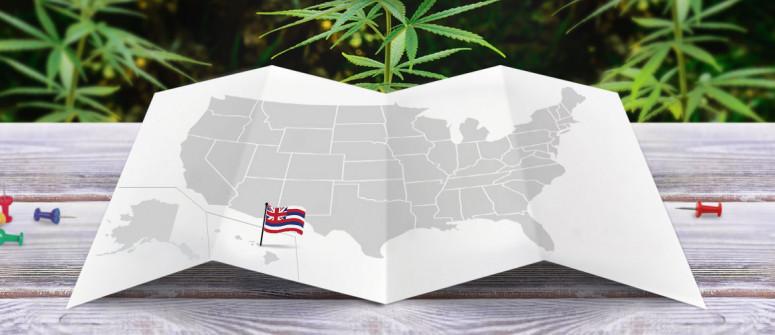 Statuto Giuridico della Marijuana nello Stato delle Hawaii