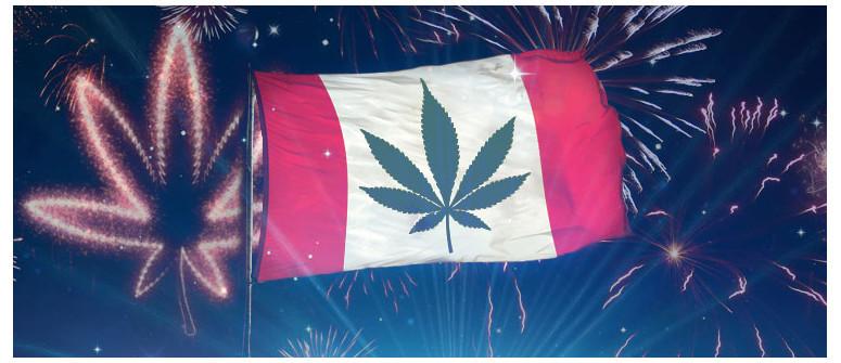Il Gran Giorno è Arrivato: La ganja è legale in Canada!