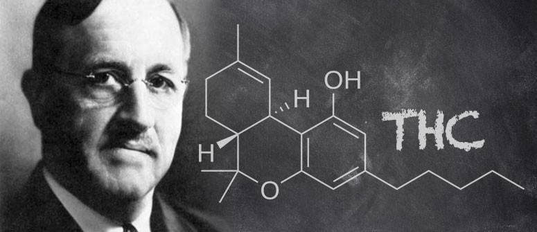 Chi Ha Davvero Scoperto Il THC?