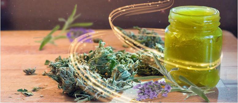 Come fare un balsamo alla cannabis
