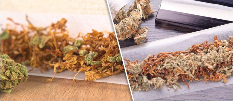 Perché alcune persone mescolano l'erba al tabacco?