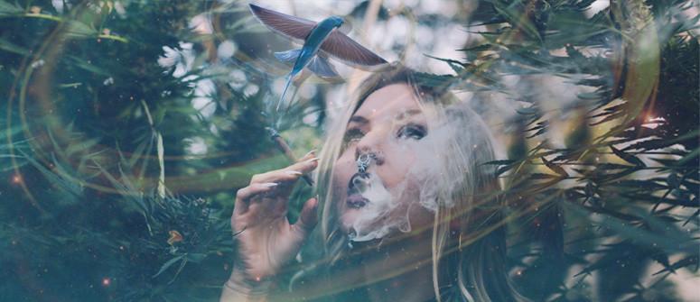 La cannabis può provocare allucinazioni?