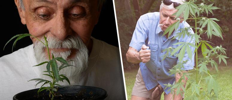 I 4 modi in cui la cannabis aiuta a combattere l'invecchiamento
