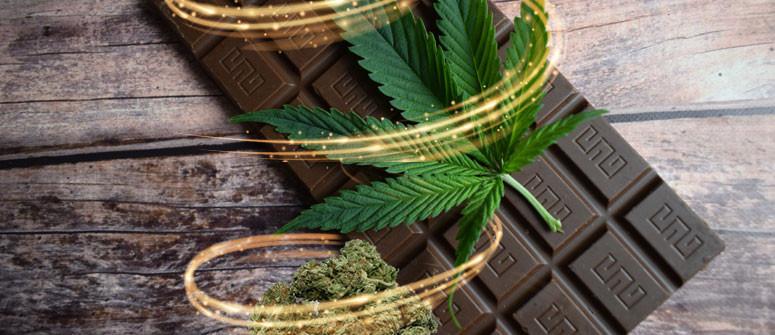 Ricetta della Cioccolata alla Cannabis