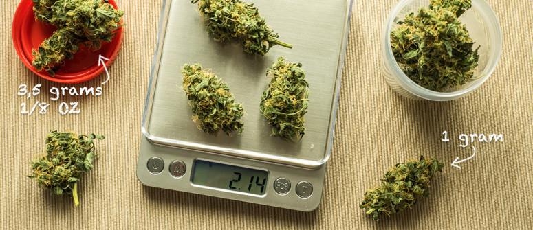 Quantità di cannabis che creano confusione: grammi, quarti, decimi e once