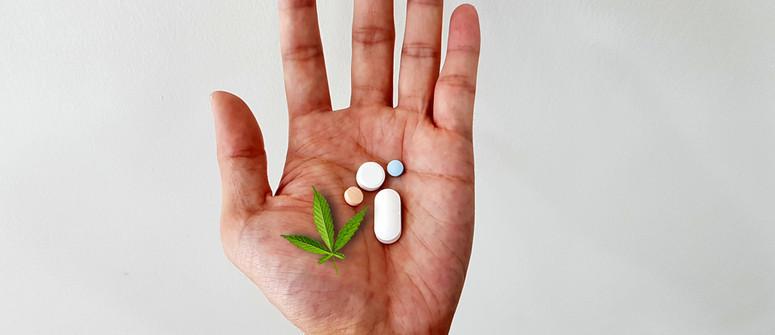 Il CBD può aiutare con la resistenza agli antibiotici?